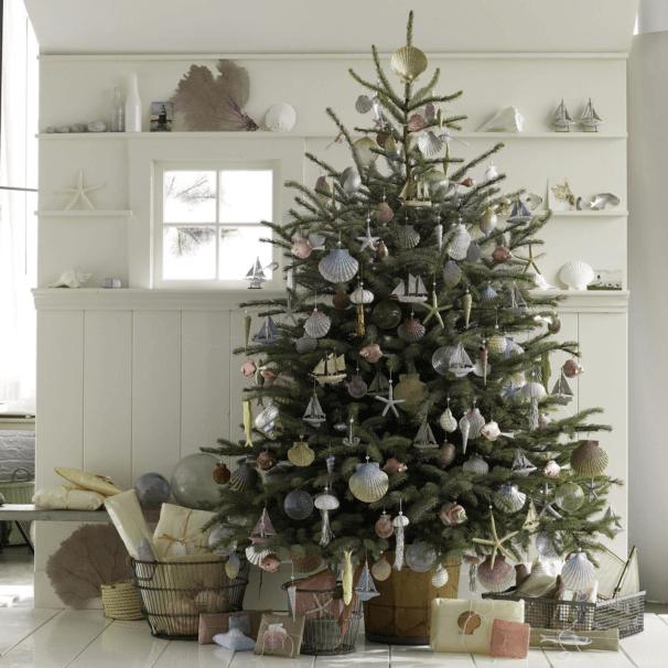 Real Fraser Fir Christmas Trees